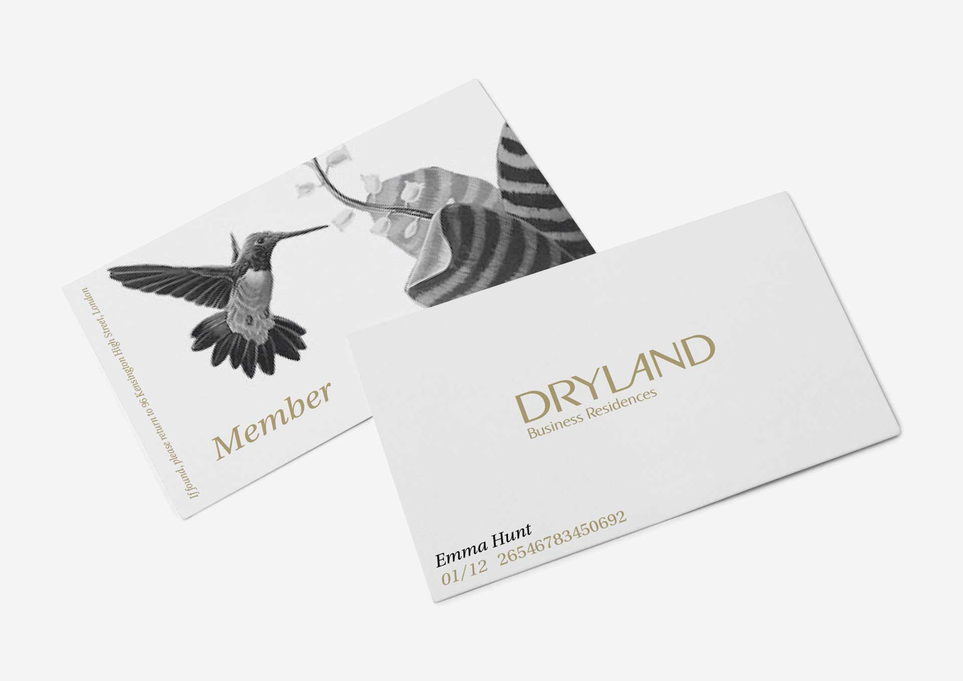 dryland-business-cards-1