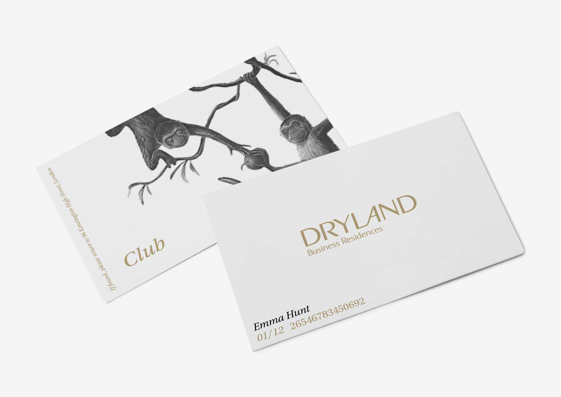 dryland-business-cards-2